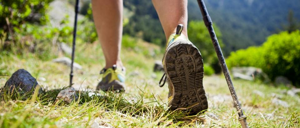 Nordic Walking hält gesund